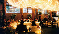 Wedding with light canopy.